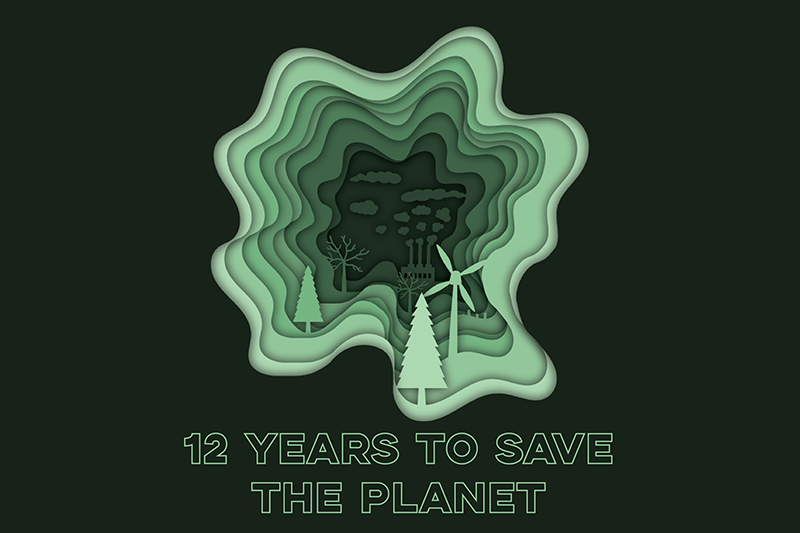 12 years to save the planet